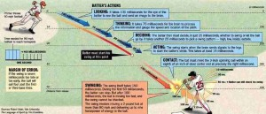 baseball_the_batting_swing_science_diagram